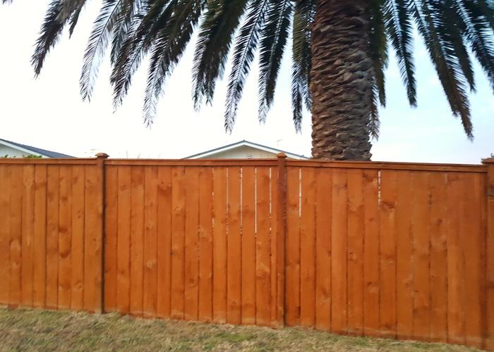 Fence wellington