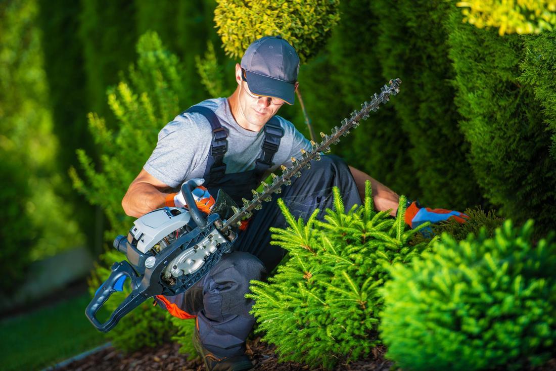 Landscape gardeners porirua